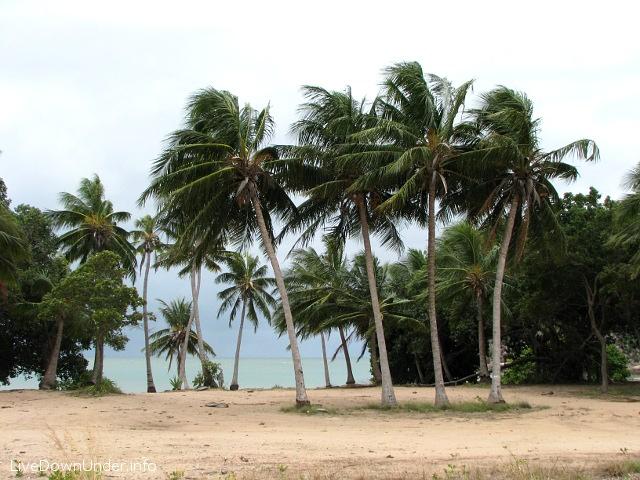 Rajska plaża. W słoneczny dzień wyszłoby tu zdjęcie-cudo.