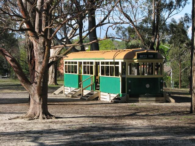 Wattle Park - tramwaj
