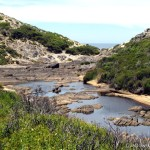 Wyspa Kangura (2). Flinders Chase National Park.