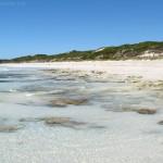 Wyspa Kangura (3). Vivonne Bay, uchatki i Mała Sahara
