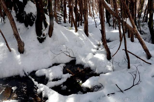 śnieg w Australii, Lake Mountain, Wiktoria