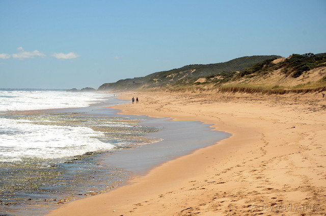 Mornington Peninsula Coastal Walk
