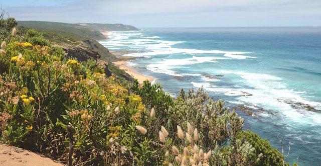 Great Ocean Walk: Od Aire River do Castle Cove
